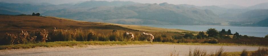 road to applecross (2)